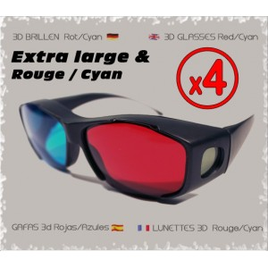 Pack x4 Lunettes Extra Large R/C